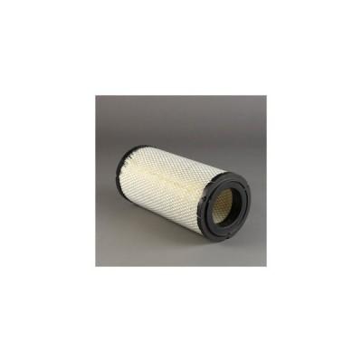 Filtro aria Donaldson P772580