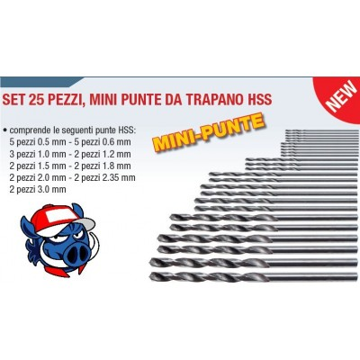 SET 25 MINI PUNTE DA TRAPANO HSS